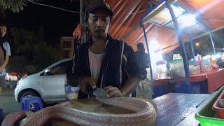 getlinkyoutube.com-JAKARTA - EATING COBRA SNAKE