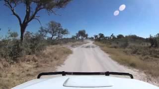 getlinkyoutube.com-Driving from North Gate through Khwai Village (Moremi, Botswana)