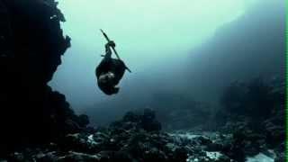 getlinkyoutube.com-Dead Mermaid Body