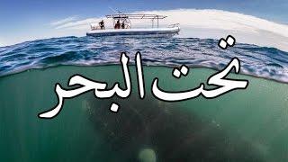 getlinkyoutube.com-قصص بوليسية : تحت البحر ( كـاملة ) !!