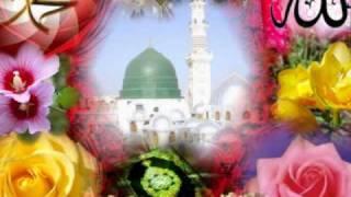 muzaffer gürler heviya teme