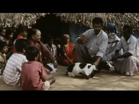 Ayurveda - Art of Being (documentary film @ 2001)