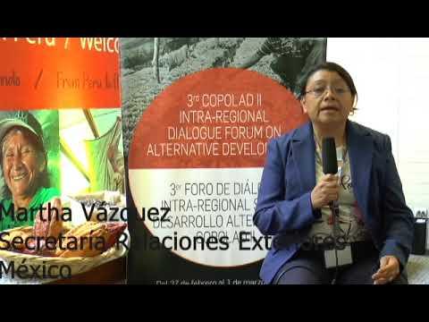 Martha Vázquez. SRE, México (III)