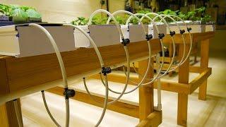 getlinkyoutube.com-Part 3 - NFT Tables - Basement Hydroponic LED Garden Tour