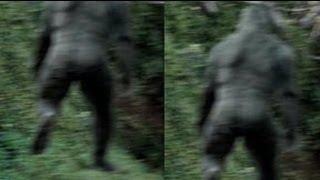 getlinkyoutube.com-Georgia Bigfoot