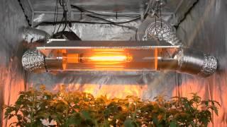 getlinkyoutube.com-VSCR6000 Virtual Sun Open Cool Tube Grow Light Hood