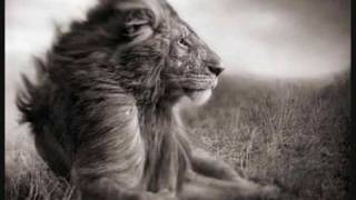 getlinkyoutube.com-Enigma - We are Nature