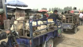 getlinkyoutube.com-דרך המשי במערב סין