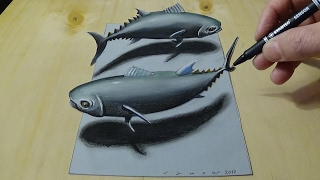 getlinkyoutube.com-3D Drawing Tuna Fish, How to Draw Tuna Fish