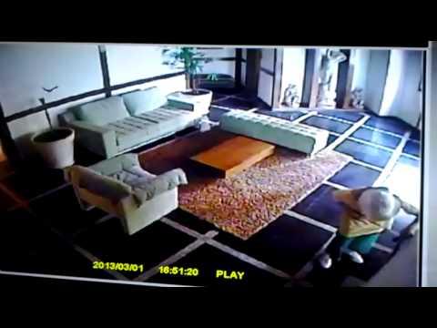 Ataque de cão Condominio Alphama
