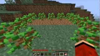 Minecraft - Jak szybko i łatwo zrobić schronienie/domek