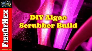 Converting A Refugium To An Algae Scrubber Step By Step Build | Frag Tank