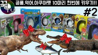 getlinkyoutube.com-공룡알,악어알,아쿠아팻알 10마리!! 한번에 키우기(2탄) jurassic, crocodile, aqua fat raise (series 2)[ 꾹TV ]