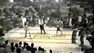 Manny Pacquiao vs Reynante Jamili