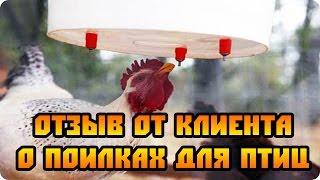 getlinkyoutube.com-Ниппельные поилки для птиц  - отзыв от клиента