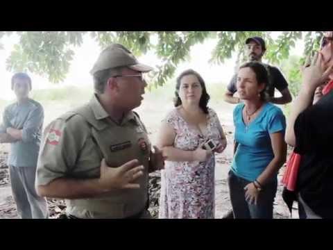 | MARUIM | PM interrompe limpeza da Ponta do Coral