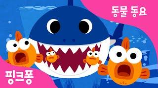 상어 가족 | 동물동요 | 핑크퐁! 인기동요