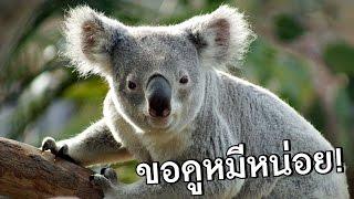 getlinkyoutube.com-ไอ้สัตว์..ตัวน้อย วันๆแกทำอะไรกันฟร่ะ!? [SkizzTv]