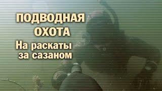 getlinkyoutube.com-ПОДВОДНАЯ ОХОТА - На раскаты за сазаном
