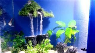 getlinkyoutube.com-Aquarium sand waterfall 17      - Mysterious island-