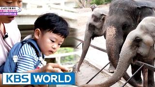 getlinkyoutube.com-5 siblings' house - Meeting Thailand animals [The Return of Superman / 2017.02.19]