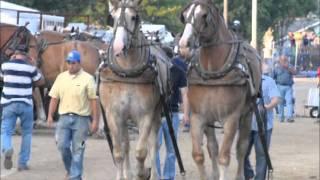 getlinkyoutube.com-2011 Lorain County Fair horse pull