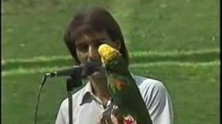 getlinkyoutube.com-Pancho The Singing Parrot