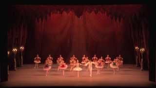 マリインスキー バレエ ハイライト in オマーン 2013の画像