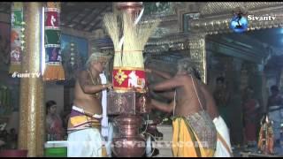 இணுவில் சிவகாமி அம்மன் கோவில் கொடியேற்றம்