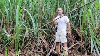 getlinkyoutube.com-Homemade sugar cane juicer