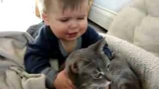 getlinkyoutube.com-Cute Baby Playing with Cat...