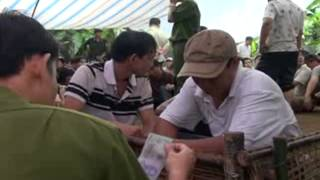 getlinkyoutube.com-Bat Truong Ga (Vinh Huu Go Cong Tay TG) part 2