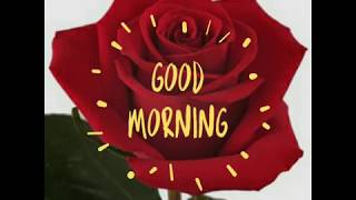 Good Morning Gif with rose.