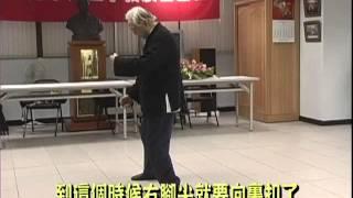 鄭子太極拳大師鞠鴻賓談雲手