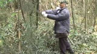 getlinkyoutube.com-直心影流十七代宗家:秋吉先生、未公開の竹斬りビデオ、