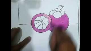 cara menggambar buah manggis untuk anak anak