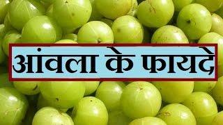 getlinkyoutube.com-आंवला के फायदे | Benefits of Amla (Gooseberry) in Hindi