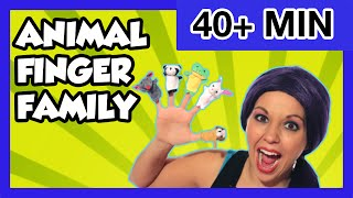 Finger Family Song | Animal Finger Family | Finger Family Songs Collection + More Nursery Rhymes
