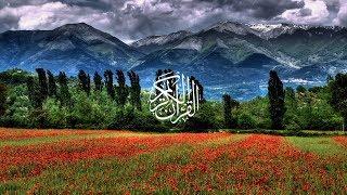 Wadi' Al-Yamani - Surat Yusuf width=