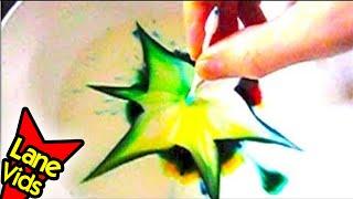 getlinkyoutube.com-COLOR CHANGING MILK SCIENCE EXPERIMENT