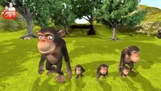 getlinkyoutube.com-เพลงลิง เพลงสำหรับเด็ก   monkey song for kids
