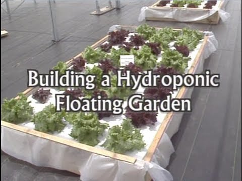 Building a Floating Hydroponic Garden