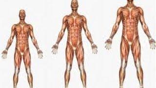 getlinkyoutube.com-المدة المطلوبة في زيادة الطول 5 سم - أبوطويلة #2101 | Short stature more 5cm