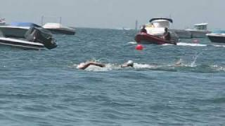 getlinkyoutube.com-Setubal Bay Swim Marathon 2008