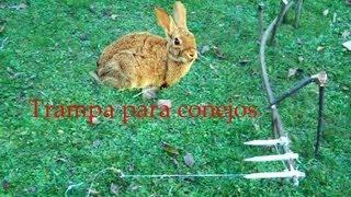 getlinkyoutube.com-ABSsupervivencia: Trampa mortal para conejos