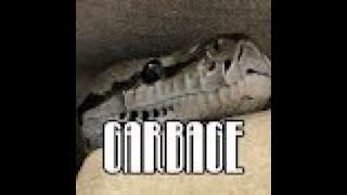 getlinkyoutube.com-Opening to Toopy and Binoo: Binoo's Birthday 2009 DVD