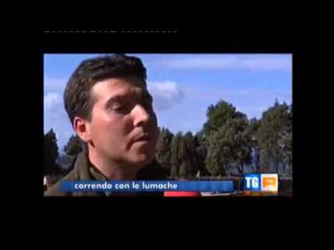 SETTIMANALE RAI 3 - LA LUMACA MADONITA (Il più grande allevamento di lumache d'Italia)