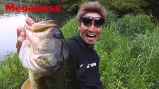 getlinkyoutube.com-「MAGSLOWL」超炸裂!野池のビッグバスハンティング!!