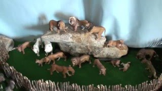 getlinkyoutube.com-Schleich zoo