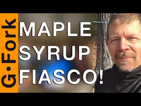Maple Syrup Fiasco! - GardenFork
